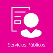 Reporte Servicios